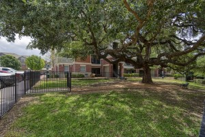 Three Bedroom Apartments for rent in San Antonio, TX - Exterior Building with Tree