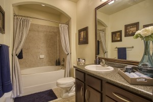 Two Bedroom Apartments for rent in San Antonio, TX - Model Bathroom (3)