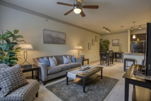 Two Bedroom Apartments for rent in San Antonio, TX - Model Living Room (2)